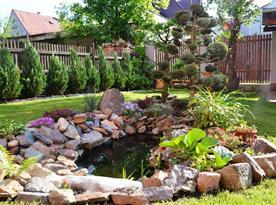Zahrada kolem domu