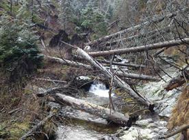 dobrodružný výlet údolím Bílé Opavy na Praděd