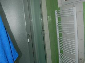 Sociální zařízení se sprchovým koutem a žebřinovým radiátorem