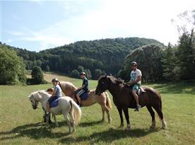 Vyjížďky na koních