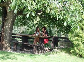 Příjemné posezení pod stromy u udírny
