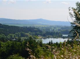 Jinolické rybníky - Oborský a Němeček
