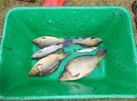 Možnost rybaření