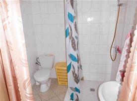 Koupelna s WC a sprchou