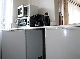 Kuchyně se sporákem, lednicí, varnou konvicí a mikrovlnnou troubou