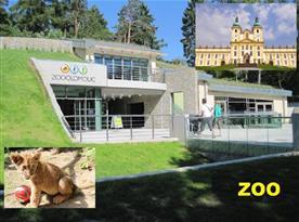 ZOO Olomouc s nedalekým poutním místem Svatý Kopeček, určitě navštivte