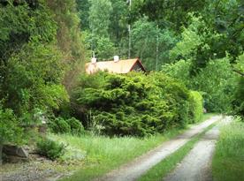 Příjezdová cesta u naší chaty a parkování přímo u chaty, vše po rovince
