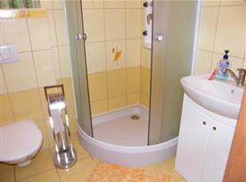 Zrekonstruovaná koupelna se sprchou a WC