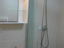 Koupelna s umyvadlem a sprchovým koutem