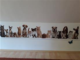 Jsou vítáni všichni zástupci pejsků i kočiček