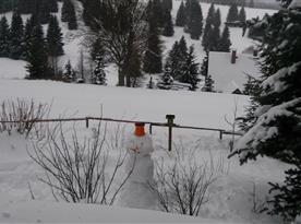 Výhled v zimě