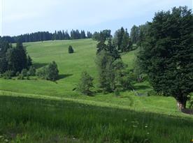 Kolem cesty na chatu (pořád do kopce) je nádherný výhled