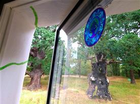 Výhled z pokoje do našeho parku s památnými duby, z nichž dva jsou staré zhruba 500 let.