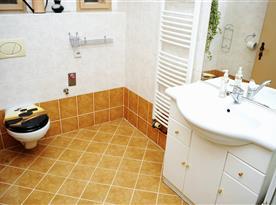 Koupelna se sprchovým koutem, umyvadlem a toaletou