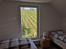 Výhled na vinohrad z pokoje B