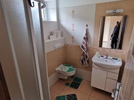 Apartmán v přízemí - koupelna s toaletou
