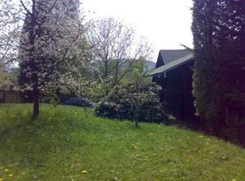 Pohled na zatravněnou zahradu