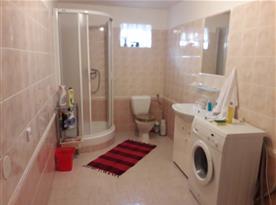 Koupelna se sprchou a toaletou