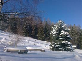 Zimní prostředí
