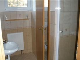 Koupelna se sprchovým koutem a oddělenou toaletou
