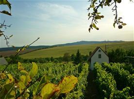 Chata Uprostřed vinohradu - ubytování  Bukovany