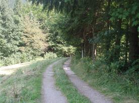 přijezdová cesta