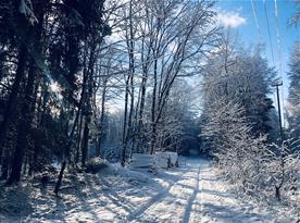Zimní vycházky po okolí