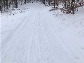 Na běžkách ke Korábu-   cesta 100m nad chalupou