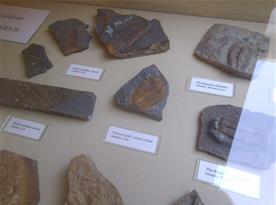Skryje_ muzeum a naleziště trilobitů cca 15 km