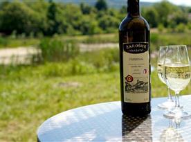 Víno s výhledem na rybník a okolní kopečky chutná nejlépe