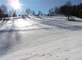 Zimní příroda