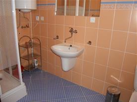 Koupelna se sprchovým koutem v apartmánu A