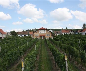 Vinný sklep Motosklep Velké Bílovice
